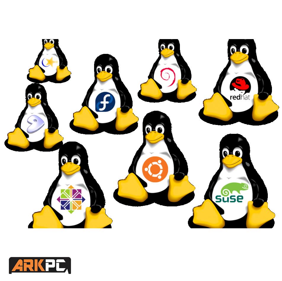 Linux PC